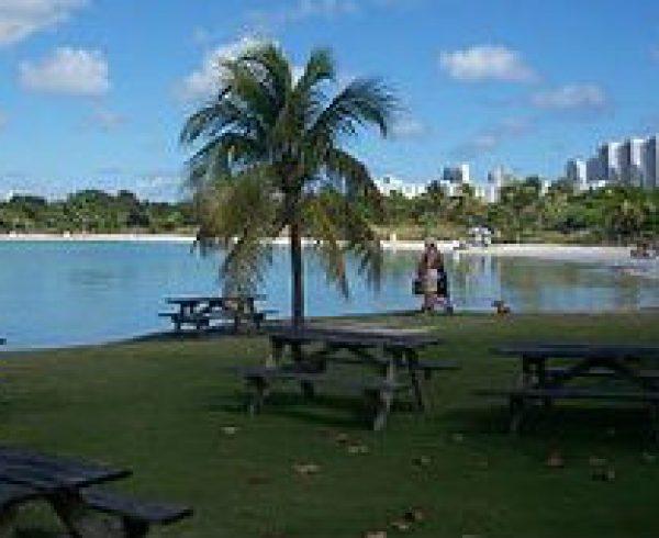Image Credit Wikimedia Commons - https://upload.wikimedia.org/wikipedia/commons/thumb/b/ba/Miami_FL_Oleta_River_SP_beach02.jpg/320px-Miami_FL_Oleta_River_SP_beach02.jpg
